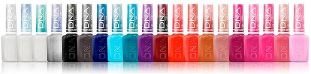 09- LINHA DNA